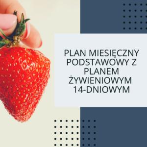 Pakiet miesięczny podstawowy z 2-tygodniowym planem żywieniowym